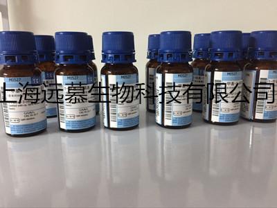 氨苄青霉素溶液(Ampicillin,100mg/ml)