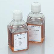 BBT缓冲液(pH7.4)