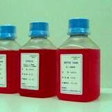 改良Hoagland's(霍格兰氏)营养液-大量元素(100×)(可配5升10升50升)